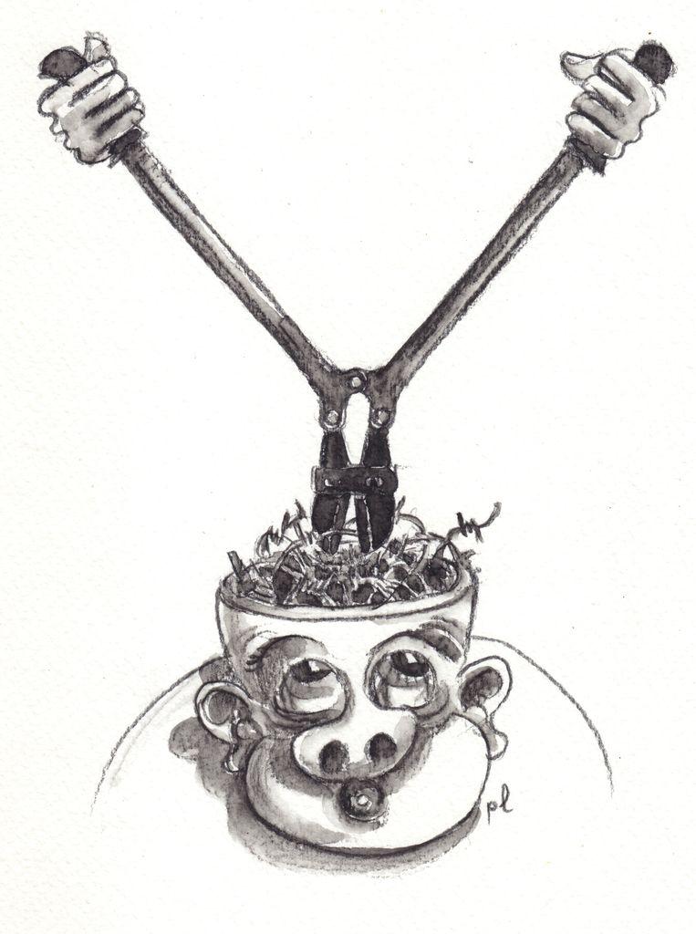 Illustration de Placid