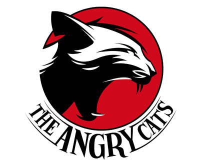 Par The Angry Cats