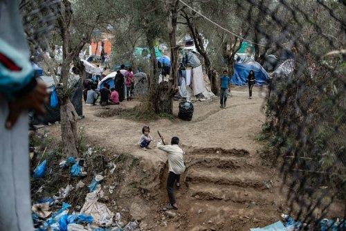 Jungle autour du camp de Mória, Lesbos, novembre 2019 / Tessa Kraan {JPEG}